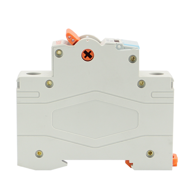 EPI-R 100A Series Isolating Switch